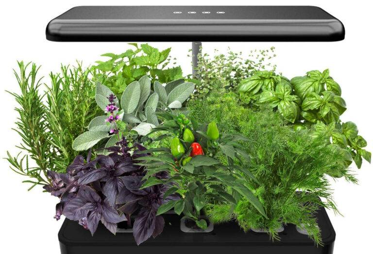 Leafy Section Grow Your Garden Indoors with Hydroponics https://leafysection.com/grow-your-garden-indoors-with-hydroponics/